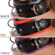 Slap Leather Delux Padded Collar
