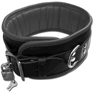 Heavy Duty Black Padded Collar