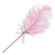 Ostrich Feather Teaser